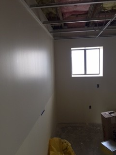 Consultation Room Paint