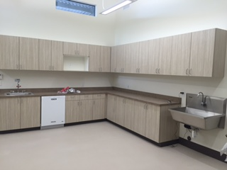 Surgery Prep/Treatment Area